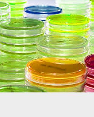 Meios para Susceptibilidade Antimicrobiana